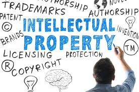 The Importance of Intellectual Property Rights