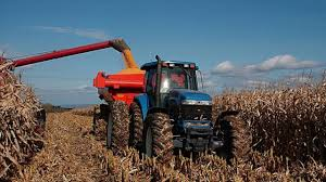 Farm Subsidies That Hurt Consumers and Global Markets