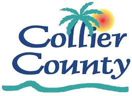 Comments on Education in Collier County Public Schools