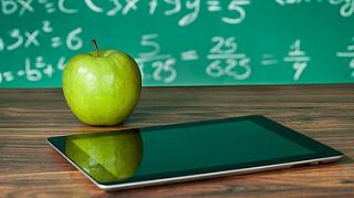 Florida Public Schools and Constitutional Amendment 8