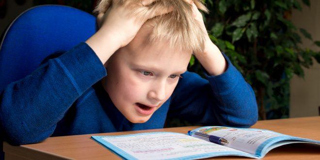 Replacing Common Core in Florida Public Schools