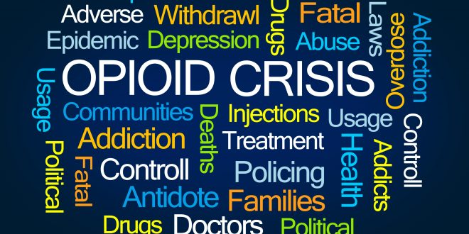 Addressing the Opioid  Crisis in Florida