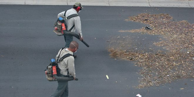 Noise and Pollution from Leaf Blowers