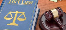 Tort Law in Florida: Need for Reform